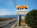 HANAICHI3882.jpg