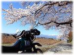 matukawa-top389.jpg